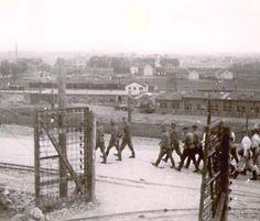 Plaszow concentration camp.