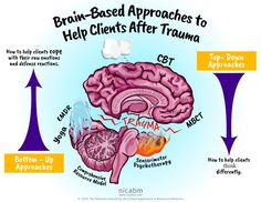 Brain-Based Approaches to Help Clients After Trauma [Infographic] - NICABM Counseling Activities, Therapy Activities, Play Therapy, Art Therapy, Therapy Ideas, Adverse Childhood Experiences, Mental Health Counseling, Counseling Psychology, Trauma Therapy