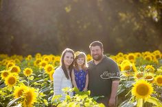 www.marie-photography.com  Marie Photography, Kansas City Photographer, Grinter Farms Sunflowers, Sunflower mini session, family photos, children