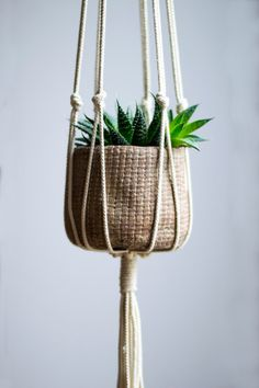 handmade and beautiful macrame plant hanger is made of an ecru colored natural cotton cord. Ships from The NetherlandsThis handmade and beautiful macrame plant hanger is made of an ecru colored natural cotton cord. Ships from The Netherlands Hanging Succulents, Small Succulents, Hanging Planters, Hanging Baskets, Macrame Hanging Planter, Succulent Planters, Macrame Plant Hanger Diy, Macreme Plant Hanger, Rope Plant Hanger