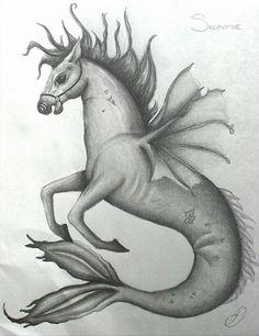 Hippocampus aka Sea Horse by ~Amzylee on deviantART