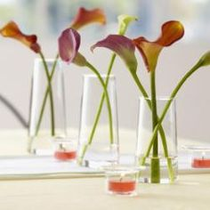 Cascading Calla Lilies Centerpiece - Calla Lilies cascade down the center of the candlelit table to bring an extra special touch to mealtime with family and friends. Shown Shown - Symmetry Trio, Universal Tealight Candles. Candle Shop, Tealight Candle Holders, Tea Light Candles, Tea Lights, Calla Lily Centerpieces, Centrepieces, Partylite, Candles Online, Shops