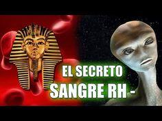 LA SANGRE RH NEGATIVO ESCONDE EL GRAN SECRETO DE LA HUMANIDAD | VM Granmisterio - YouTube