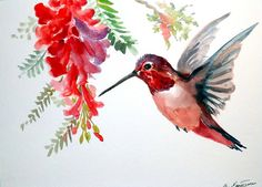 Hey, I found this really awesome Etsy listing at https://www.etsy.com/listing/128179704/hummingbird-original-watercolor-painting