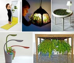 Plant-Integrated Furniture: 12 Ways to Bring Greenery Inside