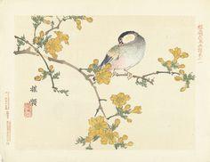 Zangvogel op bloeiende tak, Kôno Bairei, Aoki Kôsaburô, Aoki Kôsaburô, 1893