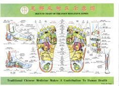 Talptérkép Traditional Chinese Medicine, How To Make