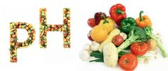 Acid base theory and paleo diet