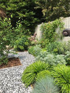 Patio Courtyard Ideas, Quail House, Garden Falls, Garden Blocks, London Garden, Over The Garden Wall, Contemporary Garden, Garden Edging, Back Gardens
