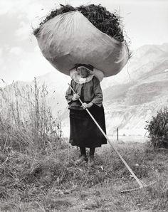 anachoretique: Haying in Cogne, 1959 by Pepi Merisio