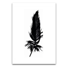 Will make a great tattoo- Feather Feather Cards, Collage, Feather Tattoos, Great Tattoos, Black Feathers, House And Home Magazine, Quote Posters, Paper Dolls, Home Art