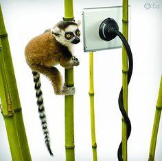 Monkey Kit – способ работать с планшетом даже на дереве вверх ногами