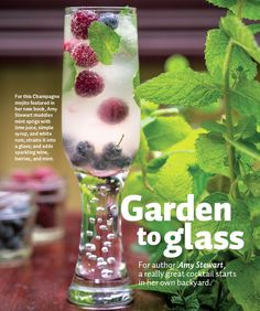 Champagne mojito: mint sprigs with lime juice, simple syrup, white rum. Strain into glass. Add sparkling wine, berries, and mint.