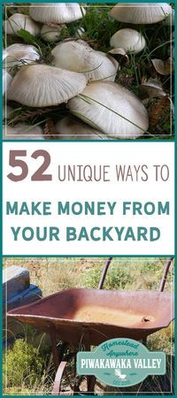 For many people making money from homesteading in their own backyard is the ultimate dream. Here are 52 unique ways to make money from your homestead or even small backyard. Make Money Homesteading.