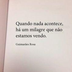 Quando nada acontece, há um milagre que não estamos vendo. - Guimarães Rosa