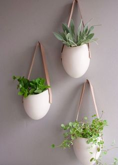 Urban herb indoor farming – Simply Home
