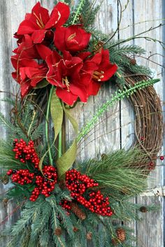 Winter Wreath, Red Amaryllis, Mixed Pine, Red Berries. $120.00, via Etsy.  .●▬▬▬▬▬●ஜ۩۞۩ஜ●▬▬▬▬▬● ஜ۩۞۩ஜ WREATH BEAUTYஜ۩۞۩ஜ ●▬▬▬▬▬●ஜ۩۞۩ஜ●▬▬▬▬▬●  Get your amaryllis from www.jacksonandperkins.com