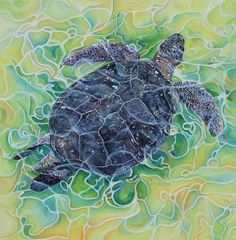 View all of my original art pieces currently looking for a new home. Various oil and mixed media pieces waiting to adorn your walls Wildlife Paintings, Wildlife Art, Turtle Swimming, Out To Sea, Colorful Paintings, Mixed Media Canvas, Warm Colors, Under The Sea, Art Pieces