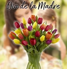 10 de mayo Días de las Madres ya estás list@ para celebrar a mamá #rosas #yosoydettaglios #dettaglios #haztupedido #mothersday #diadelasmadres #dettaglios.com List, Mayo, Plants, Instagram, Mothers, Roses, Plant, Planets