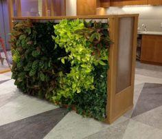 green-living-walls-installer-company-4