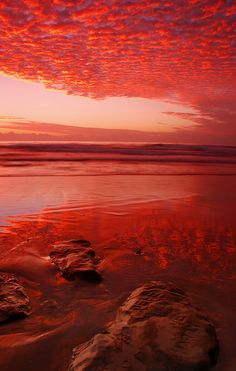 bleeding sands by Andrew Katic