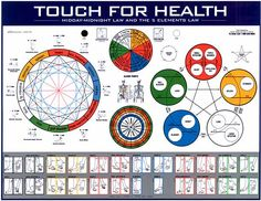 Touch for Health Wall Charts & eCharts
