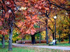 ANNINA IN TALLINNA: Kadrioru park