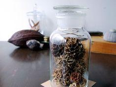 """Botanical Bottle """"fullerene"""" - Natural Gallery"""