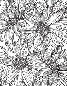 Linear doodle illustrations for coloring book Printable Flower Coloring Pages, Free Adult Coloring Pages, Colouring Pages, Coloring Books, Flower Pattern Drawing, Flower Line Drawings, Flower Sketches, Doodle Illustrations, Art Drawings
