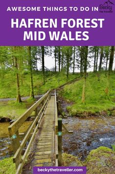 Hafren Forest in Mid Wales is the perfect location for outdoor lovers. Read here about some of the adventures I did on my trip, plus other things to do in Mid Wales. Includes lots of hiking trails in Hafren Forest and the surrounding area, plus othe Travel Advice, Travel Guides, Travel Tips, Travel Destinations, Holiday Destinations, Best Places To Travel, Cool Places To Visit, Sightseeing London, London Travel