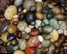 My Garden Rocks
