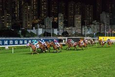 #HONGKONG #RACES by Arno Simons #Photocircle #photoart from #Asia #cities #horserace #animals #skyline #urban #streetphotography #night #nighttime #nightshot #sportphotography  #Closethecircle - if you buy this photo Arno Simons and Photocircle #donate 16% to help people affected by the war in #Syria - #socent #dogood #purchasewithpurpose #giftsthatgiveback #wallart #homedecor