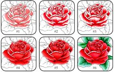 copic colored roses step by step