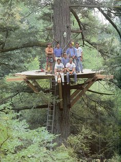 Building Your Tree House