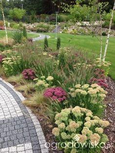 Roztoczańskie klimaty - strona 535 - Forum ogrodnicze - Ogrodowisko
