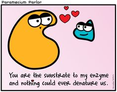Nothing says love like a substrate-enzyme complex. Well…maybe before enzyme catalysis, that is.