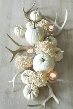 Who says your fall centerpiece has to be orange? Stunning fall centerpiece by tone on tone with muted colors, antlers, white pumpkins, and white hydrangeas. White Pumpkin Decor, White Pumpkins, Fall Pumpkins, Mini Pumpkins, Painted Pumpkins, Fall Home Decor, Autumn Home, Warm Autumn, Diy Autumn
