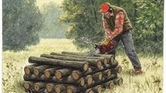A Faster Way to Cut Firewood With a Chain Saw