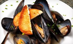 Groupon - French Cuisine at Restaurant Toulouse (Half Off). Two Options Available.. Groupon deal price: $15.00