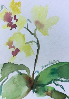 Buy Zen Orchid #3, Watercolour by Diane Wallace on Artfinder. Discover thousands of other original paintings, prints, sculptures and photography from independent artists.