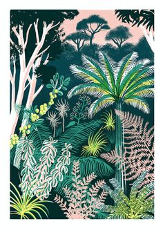 Scalesia Zone Print by Eleanor Taylor Scalesia is a genus of fifteen different species of shrubs and trees endemic to Galapagos Islands. Motif Jungle, Jungle Art, Jungle Pattern, Jungle Drawing, Jungle Illustration, Plant Illustration, Flora Und Fauna, Guache, Botanical Art