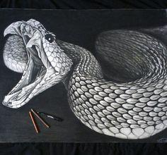 drawings of reptiles Snake Drawing, Snake Art, Animal Drawings, Pencil Drawings, Art Drawings, Drawings Of Snakes, Kobra Tattoo, Snake Tattoo, Amazing Drawings