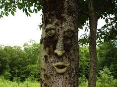 Garden Artu2013we Love Our Tree Face U003d) | Unique Yard Ideas | Pinterest | Tree  Faces, Garden Art And Gardens