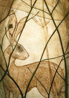 'Glimpse' by Printmaker Kerry Buck. Blank Art Cards By Green Pebble. www.greenpebble.co.uk