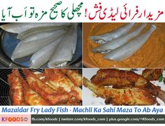 As fish season is coming and people are more likely to cook fish dishes in winters, I have prepared a guide for you and presented it here at KFoods.com.