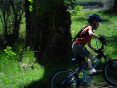 Activities at Mountain Splendour Resort. Central Drakensberg accommodation…
