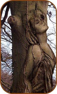 There you like the tree- Da ist man gern der Baum There you like the tree - Tree Carving, Wood Carving Art, Fantasy Kunst, Fantasy Art, Art Sculpture En Bois, Art Et Nature, Weird Trees, Tree Faces, Unique Trees