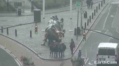 Visit New York City, NY, United States with EarthCam's live Charging Bull Cam: http://www.earthcam.com/usa/newyork/wallstreet/chargingbull/?cam=chargingbull_hd