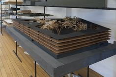 Peter Zumthor Architectural Models