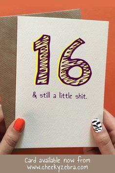16 Little Shit Funny Happy 16th Birthday Card